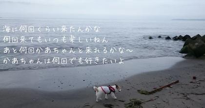 201685154921.JPG