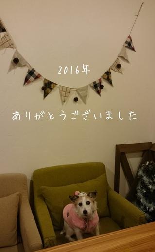 20161231215246.JPG