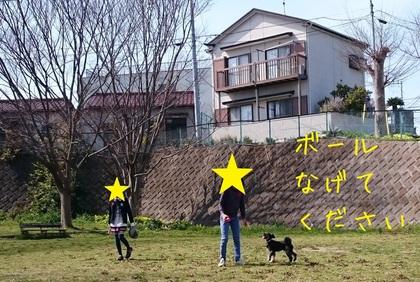 2017412213930.JPG